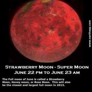 Lonesome Mango And Strawberry Moon The Journal Of Elaine